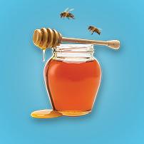 Oxfam Unwrapped - Honeybees
