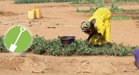 Mrs Tamboura tends to her garden