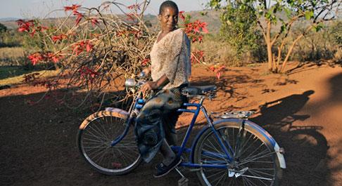 Fernanda, Mozambique