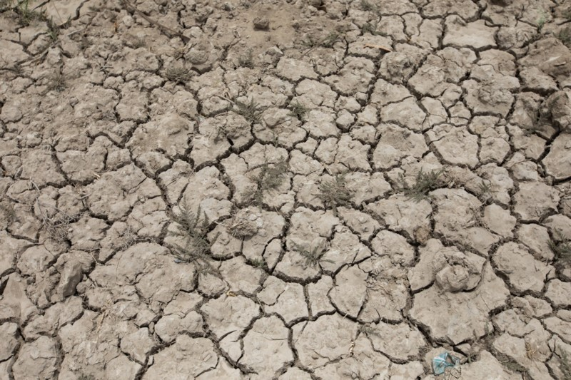 Very dry cracked land