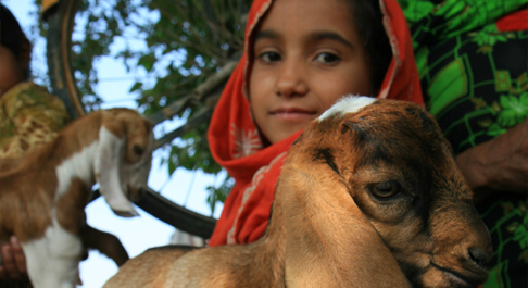 Zahra with a baby goat.