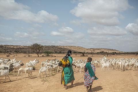 Women walking on arid land