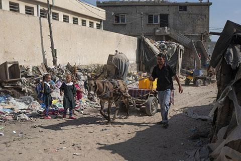 Ahmed taking his donkey out to find water
